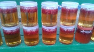 Грибочки-сосновые шишки наМеду